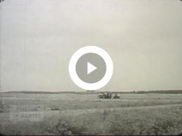 Keyframe of Dagelijks leven (g), 1950-1959