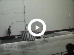 Keyframe of Dagtocht naar Harderwijk, 1963