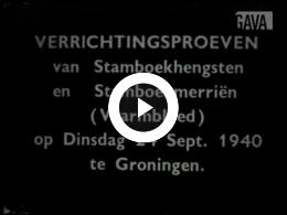 Keyframe of Verrichtingskeuring Groningen September 1940, September 1941 en hengstenmoeders