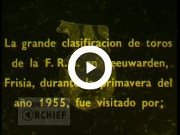 Keyframe of Voorjaarsstierenkeuring, 1955