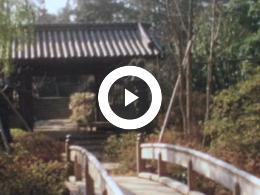 Keyframe of TOKYO VROEGER EN NU