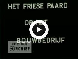 Keyframe of Het Friese paard in de akkerbouw, 1950-1955