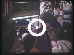 Keyframe of 5 dec. 1980