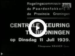 Keyframe of Centrale Paardenkeuring te Groningen, 11 Juli 1939