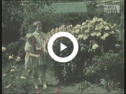 Keyframe of Morellen plukken / C. R. Tiddens, circa 1940