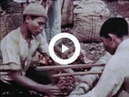 Keyframe of AMATEUROPNAMEN O.A. NEDERLANDS-INDIË - NEDERLANDS-INDIË VOORDAT HET INDONESIË WERD 1948