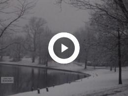 Keyframe of Sneeuw in de Prinsentuin; Engeland, 1979