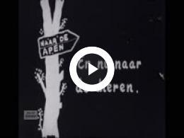 Keyframe of Dorpsfilm 1954, II, 1954