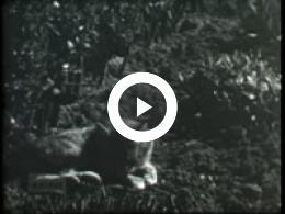 Keyframe of CAF Leeuwarden 1, 1950