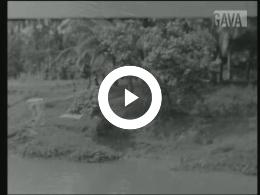 Keyframe of Elk wat wils / J. Nicolaï, circa 1947