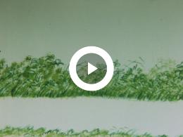 Keyframe of DE TROON (smalfilm)