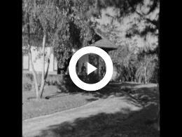 Keyframe of ONS LEVEN OP SUMATRA 1 1956/1957