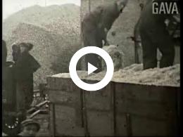 Keyframe of Suikerfabriek Vierverlaten / P. Mulder, 1930-1939