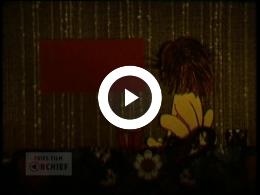 Keyframe of Lions, de Potten, 1980