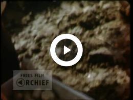 Keyframe of Aardappelteelt (Hettema), ca. 1955-1960