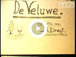 Keyframe of AV1954 Veluwe; A. Dragt; wellicht jaren '70
