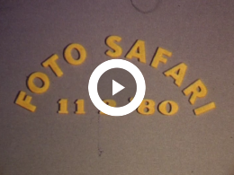Keyframe of Foto Safari, 11-02-1980