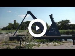 de_westerwoldsche_aa_riet