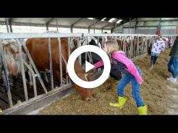 kom_in_de_kas_-_open_dag_boeren_en_tuinders_-_39e_editie_zuidland_-_simonshaven_-_2016