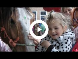 paardenmarkt_heenvliet_2015