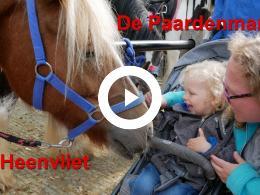 paarden_en_ponys_in_heenvliet_op_de_333e_paardenmarkt