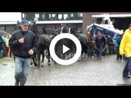paarden_reddingsboot_op_ameland