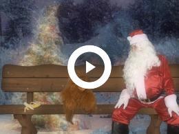 de_kerstwens