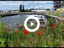 woningbouw_de_haven_21_-_mijnheer_tabak_neemt_regelmatig_een_kijkje_spijkenisse_2019