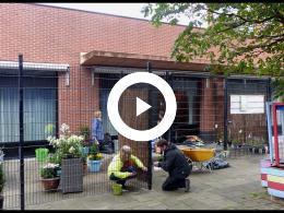 bewoners_humanitas_hoogvliet_dolblij_met_eigen_tuintje_hoogvliet_2020