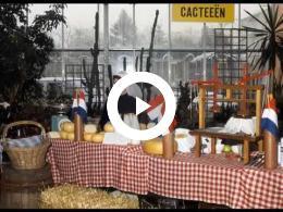 rotterdam_-_luik_-_markt_1920