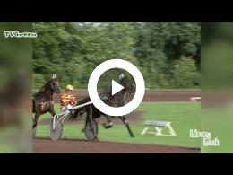librarylook_paardenrennen