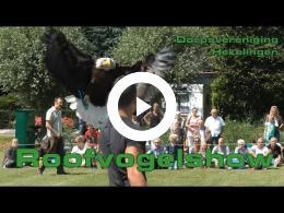 roofvogelshow_in_hekelingen