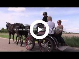 sfeerimpressie_eerste_paardendagen_in_eersel_2016