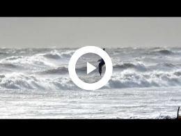 wind_zee_en_stranden