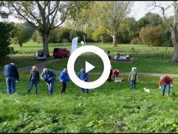 bewonersgroep_waterland_plant_3000_bloembollen_in_park_waterland_spijkenisse_2018