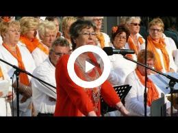 koninginnedag_-_winnend_filmpje_wedstrijd_buurtlink_spijkenisse_2011