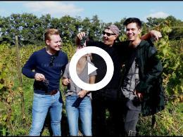 druivenoogst_op_wijndomein_de_vier_ambachten_met_hulp_van_de_horeca_academie_simonshaven_2018