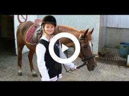 manege_hippotel_-_van_horne_hoeve_-_paarden_country_weert_2013