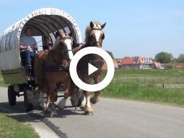 vlieland_vier_dagen_genieten