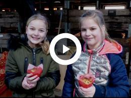 appeltaartjes_bakken_en_appelsap_maken_op_de_buytenhof_rhoon_2020