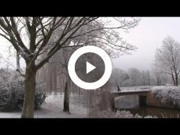 middelburg_by_white