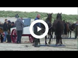 ameland_paardenreddingboot_oktober_2012_hd