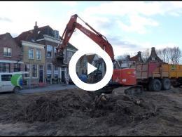 paardenkastanjes_gekapt_op_markt_heenvliet_2018