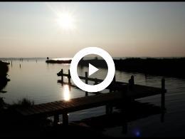 battenoord_winter_-_flamingos_in_het_grevelingenmeer_goeree_overflakkee_2018