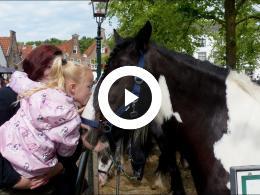 paardenliefde_op_de_333e_editie_van_de_paardenmarkt_heenvliet_2019