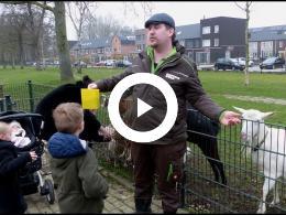 burendag_op_kinderboerderij_de_oedenstee_hoogvliet_2020