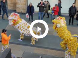 leeuwendans_chinees_nieuwjaar_in_de_koopgoot_rotterdam_2020
