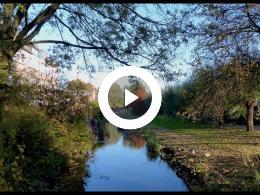 herfst_in_spijkenisse_west_-_rondom_dreef_en_kromme_dreef_2018