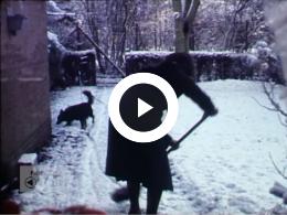 Keyframe of Winter 1981-82: In en om huis / Eernewoude / Hooidammen / Leeuwarden Prinsentuin / Langebrug Westergeest / Dr. Haven, 1981-1982